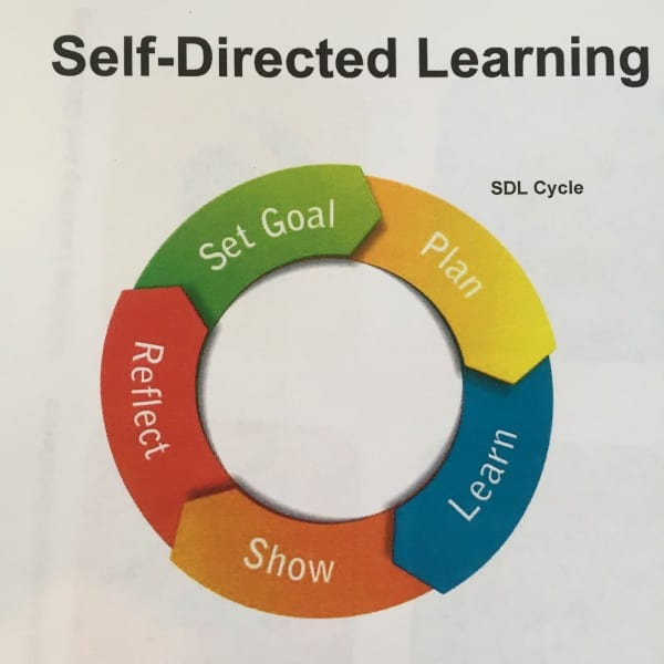 adult learning theories: the self-directed of learning essay Development program about adult learning theory, librarians in this study   qualitative analysis of data in reflective essays gathered before and after the   self-directed learning activities and behaviors33 she determined that.